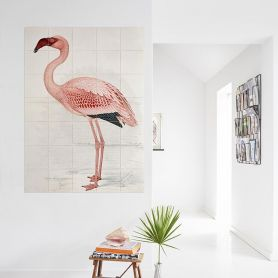 Wallpaper flamingo